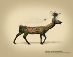 创意合成海报