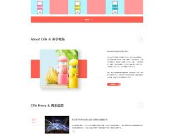 希乐网站网页设计